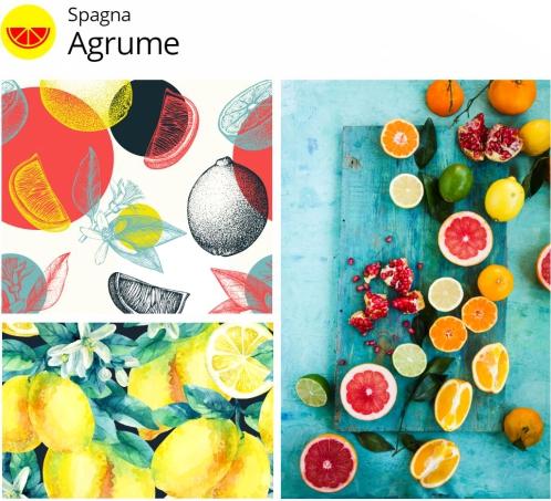 Tendenze creative shutterstock 2017 Spagna Agrumi